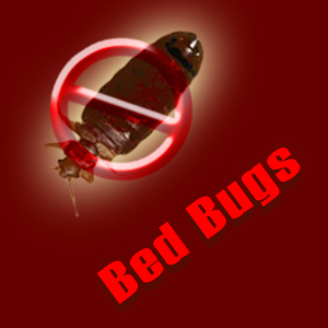 Exterminate Bed Bugs