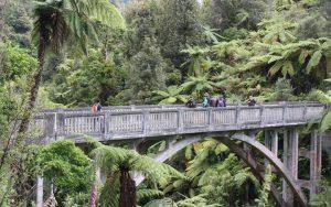 Bridge to Nowhere - Whanganui Journey